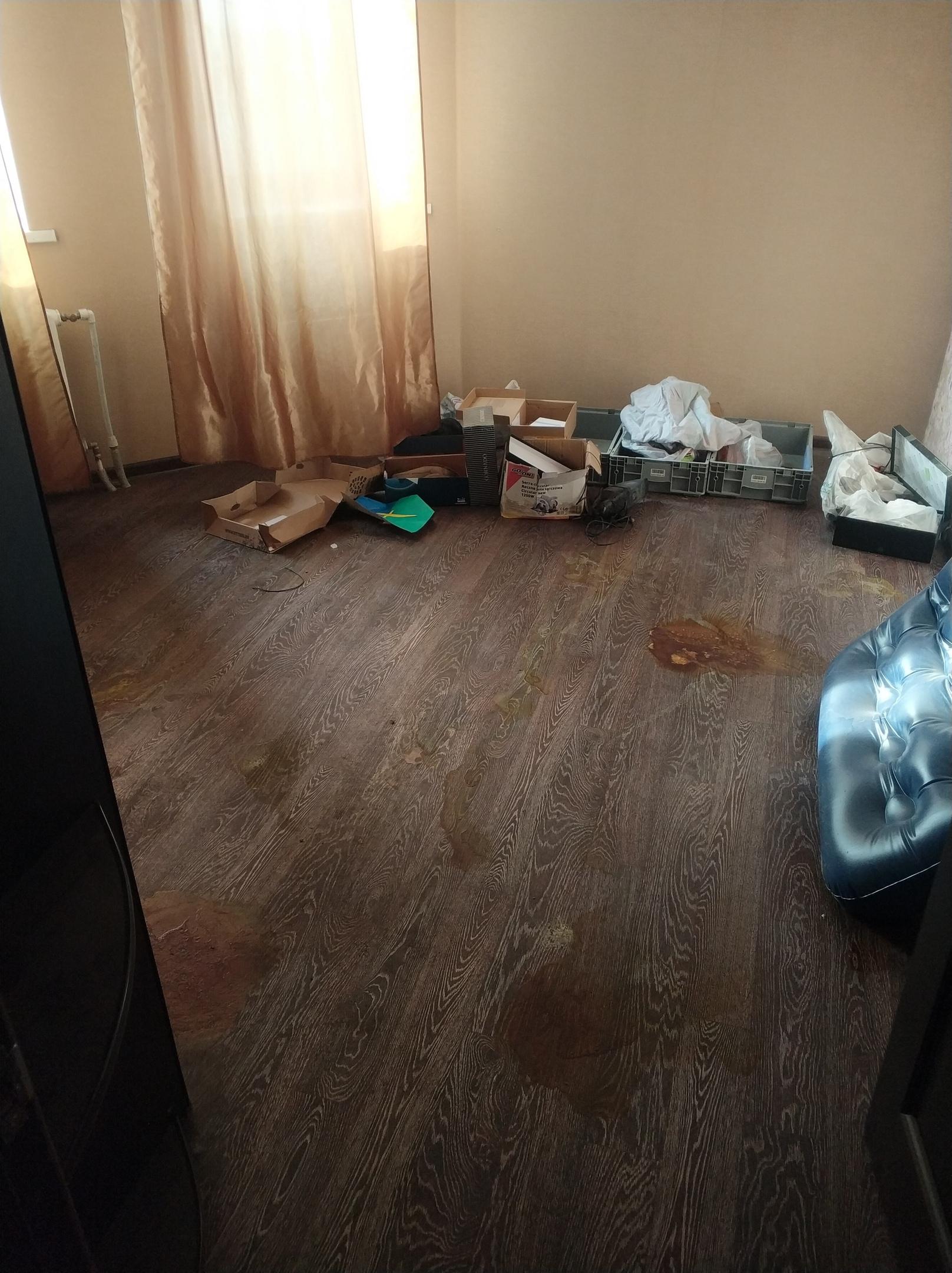 уборка после квартирантов